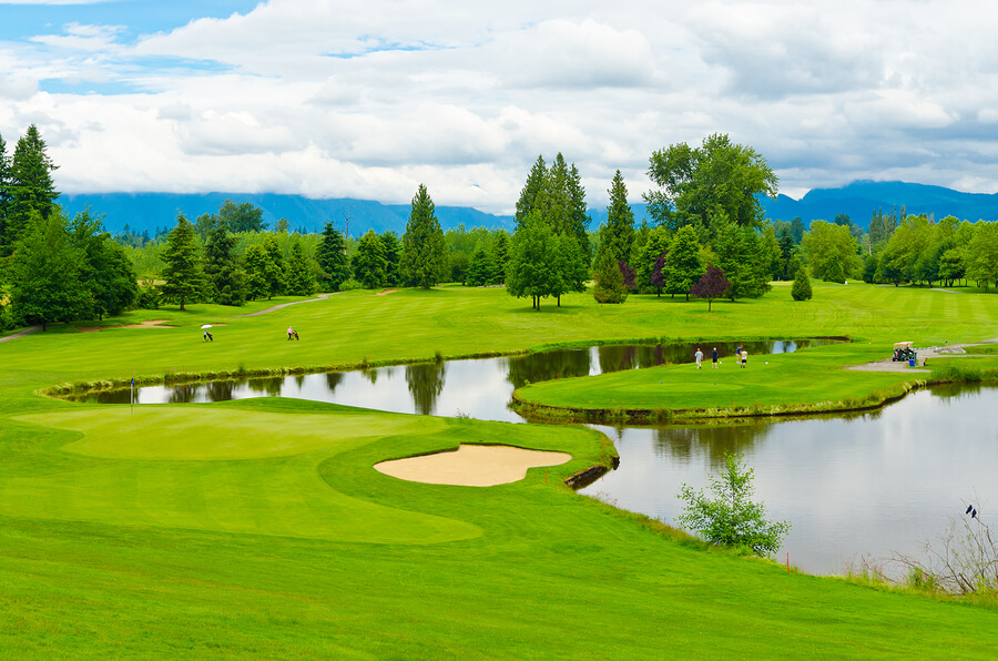 Golf Course Homes For Sale in Nashville
