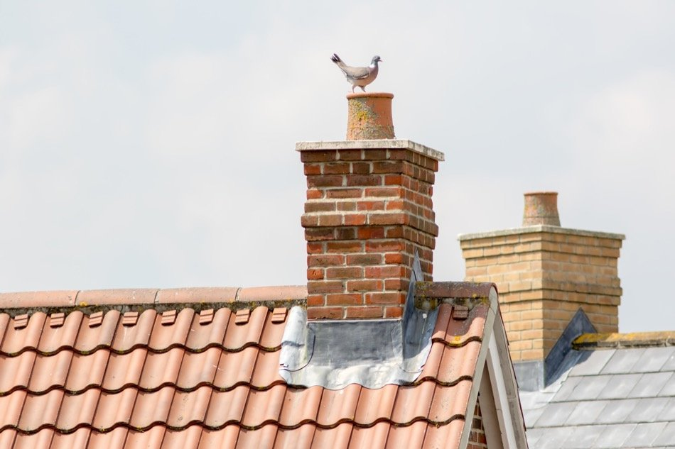 What You Should Know About Maintaining Your Chimney