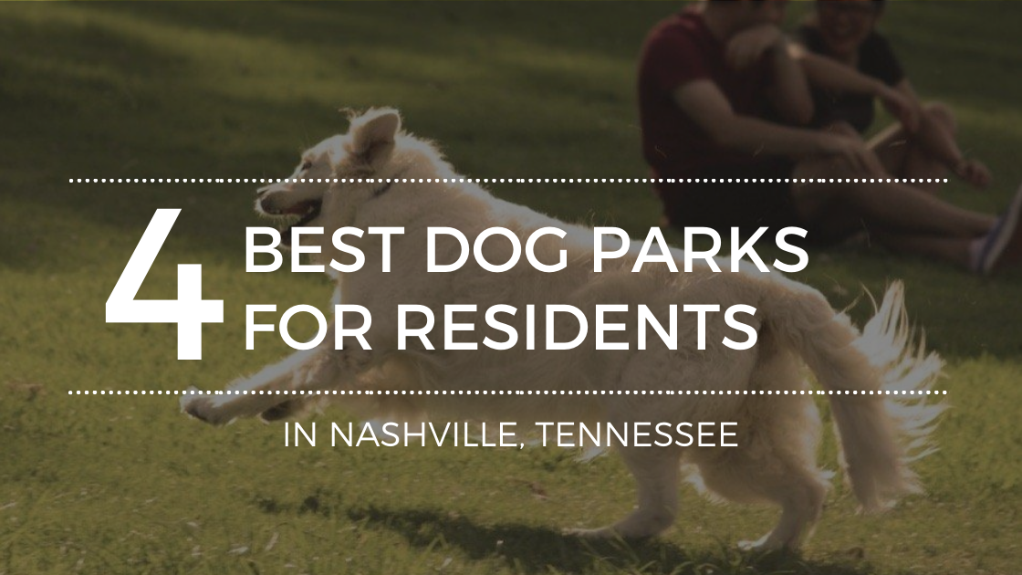 4 Must-See Dog Parks in Nashville, TN